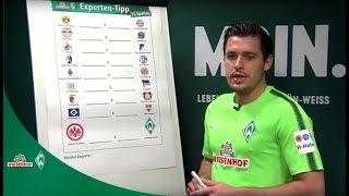 WIESENHOF: Werder-Expertentipp 11. Spieltag