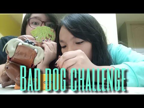 THE BAD DOG CHALLENGE | Jas and Ashanti