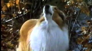 Lassie - Trailer (1994)