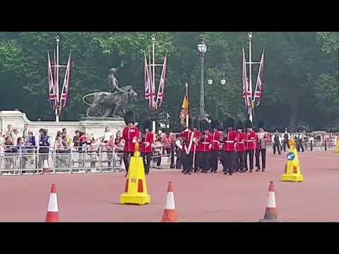 Gaurds Change Ceremony (Buckingham Palace)