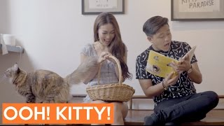 Cat Cafe - The In Thing: EP 5