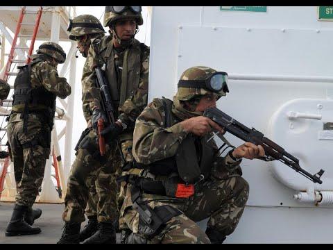 أخبار عربية - الجيش الجزائري يقتل مسلحين ويلقي القيض على اثنين آخرين  - نشر قبل 1 ساعة