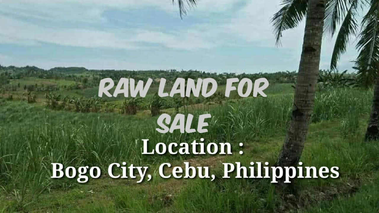 RAW LAND FOR SALE!!! AT VERY LOW PRICE | BOGO CITY CEBU