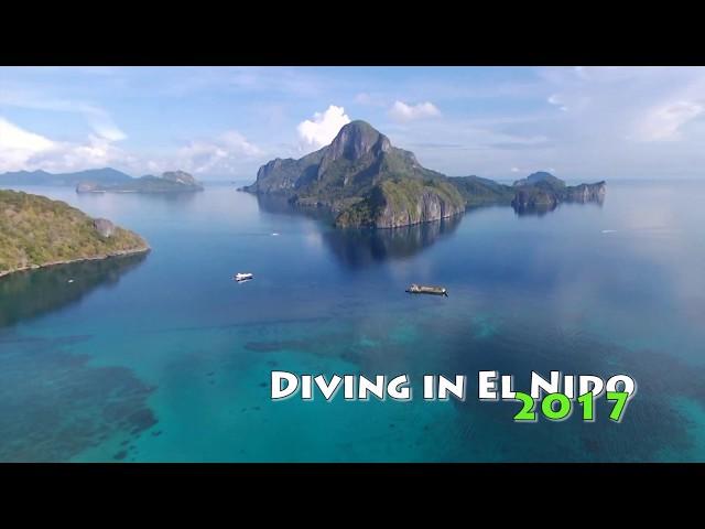 Palawan Island Scuba Diving (天国のかけらパラワンダイブ)