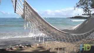 Cofresí Palm Beach and Spa Resort - Dominican Republic, Puerto Plata