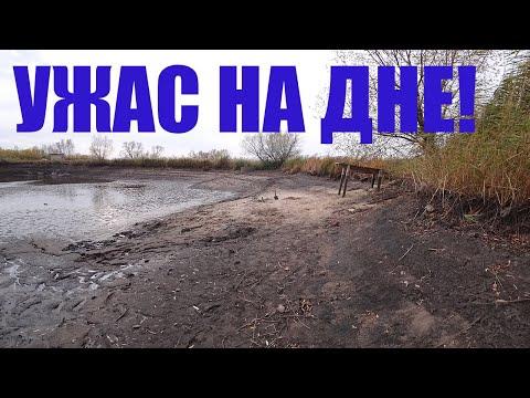 ОСУШИЛИ ДЕРЕВЕНСКИЙ ПРУД И ОБНАРУЖИЛИ!
