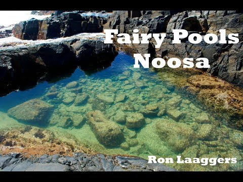 Fairy Pools Noosa Heads ( Travel Vlog 024 )