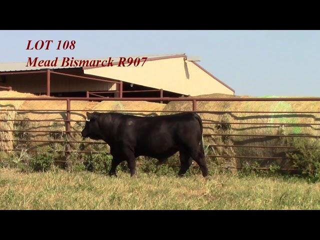 Mead Angus Lot 108