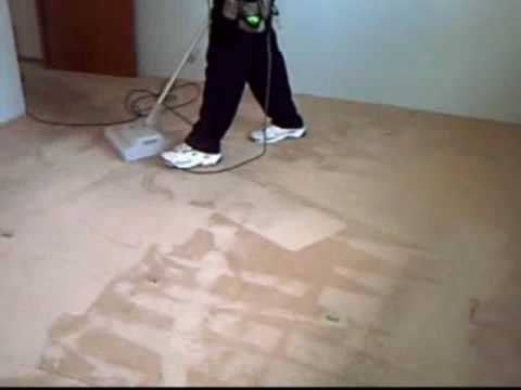 Carpet Cleaning of Champions
