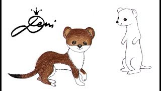 Hermelin schnell zeichnen lernen ✍🏻 как се рисува хермелин ✍🏻 how to draw a ermine 貂