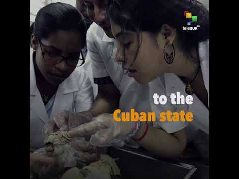 Cuba Withdraws Doctors From Brazil