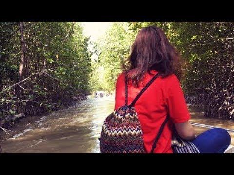 Khám Phá Vườn Quốc Gia Đất Mũi Bằng Cano - Cà Mau Tour | Nụ Cười Mêkong chuyên Tour miền Tây