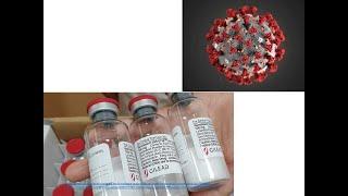 Fim Da Pandemia? Remdesivir Para Tratamento Da Covid-19