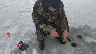 Зимняя рыбалка 01 2020 озеро б Свины