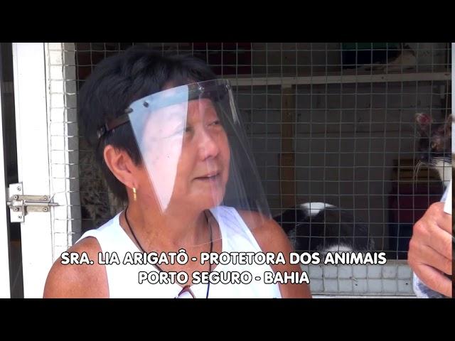 Voz dos bichos. Porto Seguro - Bahia