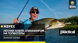 видео Летняя рыбалка: ловля жереха на спиннинг