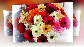 Для тебя эти цветы! Музыкальная видео открытка