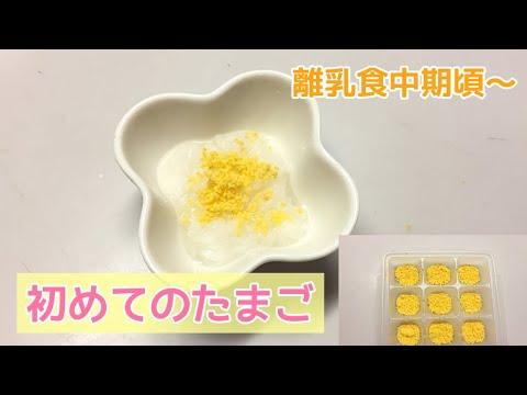 離乳食 卵黄