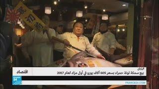 سمكة تونة حمراء ب 605 آلاف يورو في اليابان