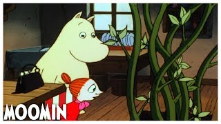 Adventures from Moominvalley EP2: The Magic Hat | Full Episode