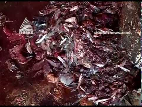 Waste disposal plant dysfunction at Kozhikode corporation