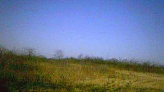 Gun Smokin a rabbit 3 15 2014 2nd circle