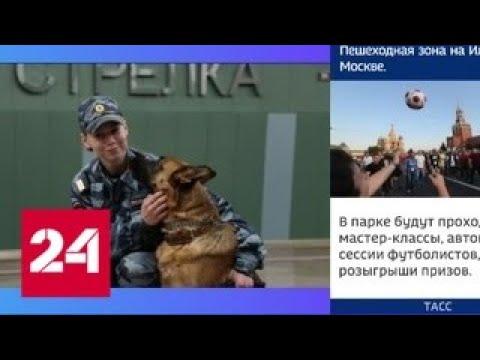 Кинологическая служба полиции отмечает профессиональный праздник - Россия 24