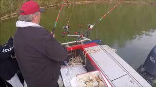 Catfishing on Watts Bar Lake