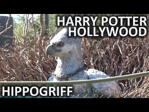 Flight of the Hippogriff FULL RIDE at Universal Studios Hollywood's Wizarding World of Harry Potter
