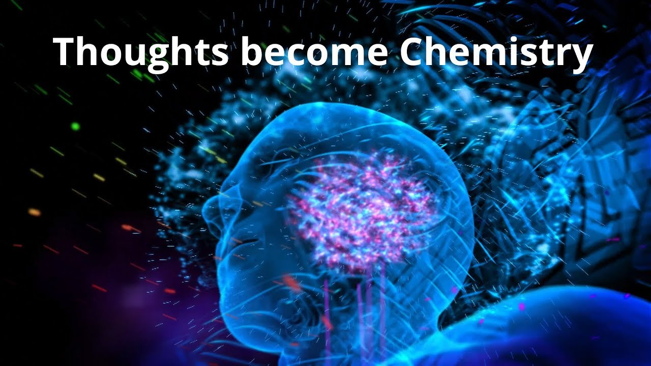 Thoughts Become Chemistry | Dr. Bruce Lipton
