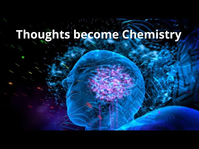 Thoughts Become Chemistry - Dr. Bruce Lipton