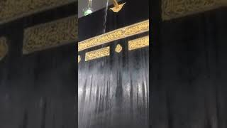 Allah Kay Mehboob Banday || Kahani Center Shorts