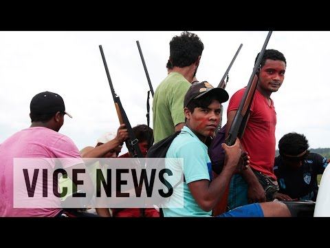 Shotguns, Machetes, and Spears: Fighting Illegal Loggers (Trailer)