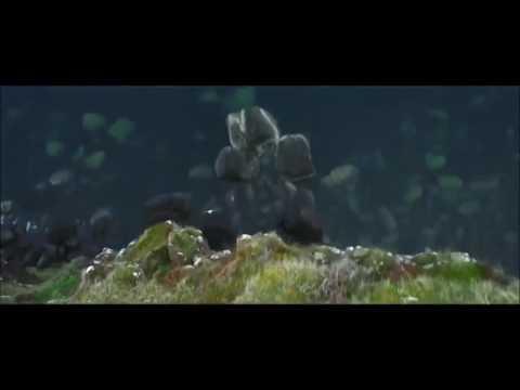 Vert Émeraude (2016) HD Streaming VF