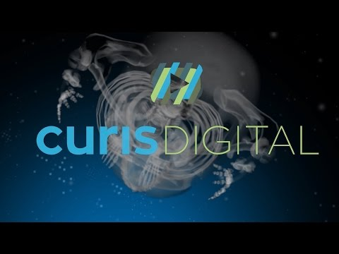 CurisDigital Company Introduction