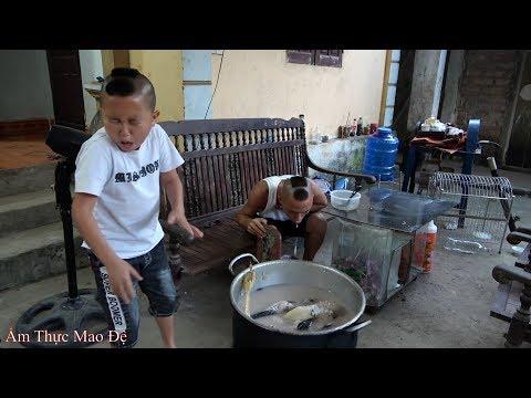 Cháo Gà Cả Lông - Mao Ca Ăn Nhầm Cháo Chó Của Mao Đệ Vì Tội Tham Ăn