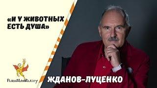 Стихи / Автор:  Жданов - Луценко Николай Иванович / И у животных есть душа