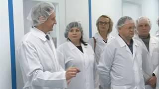 Производство лекарств против рака