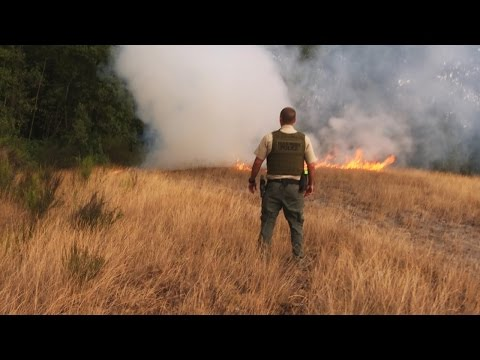 Fish and Wildlife Officer Battles Small Wildfire