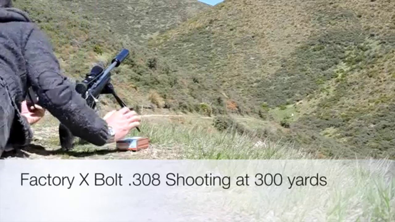 Browning X Bolt .308 review at 300 Yards 200, 600 and 700 ...