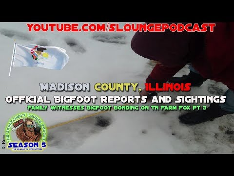 Bigfoot sightings from Madison County, Illinois - SLP547