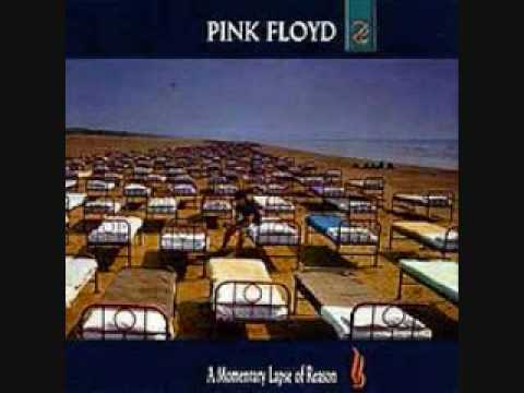 A momentary lapse of reason n15 - 1 3