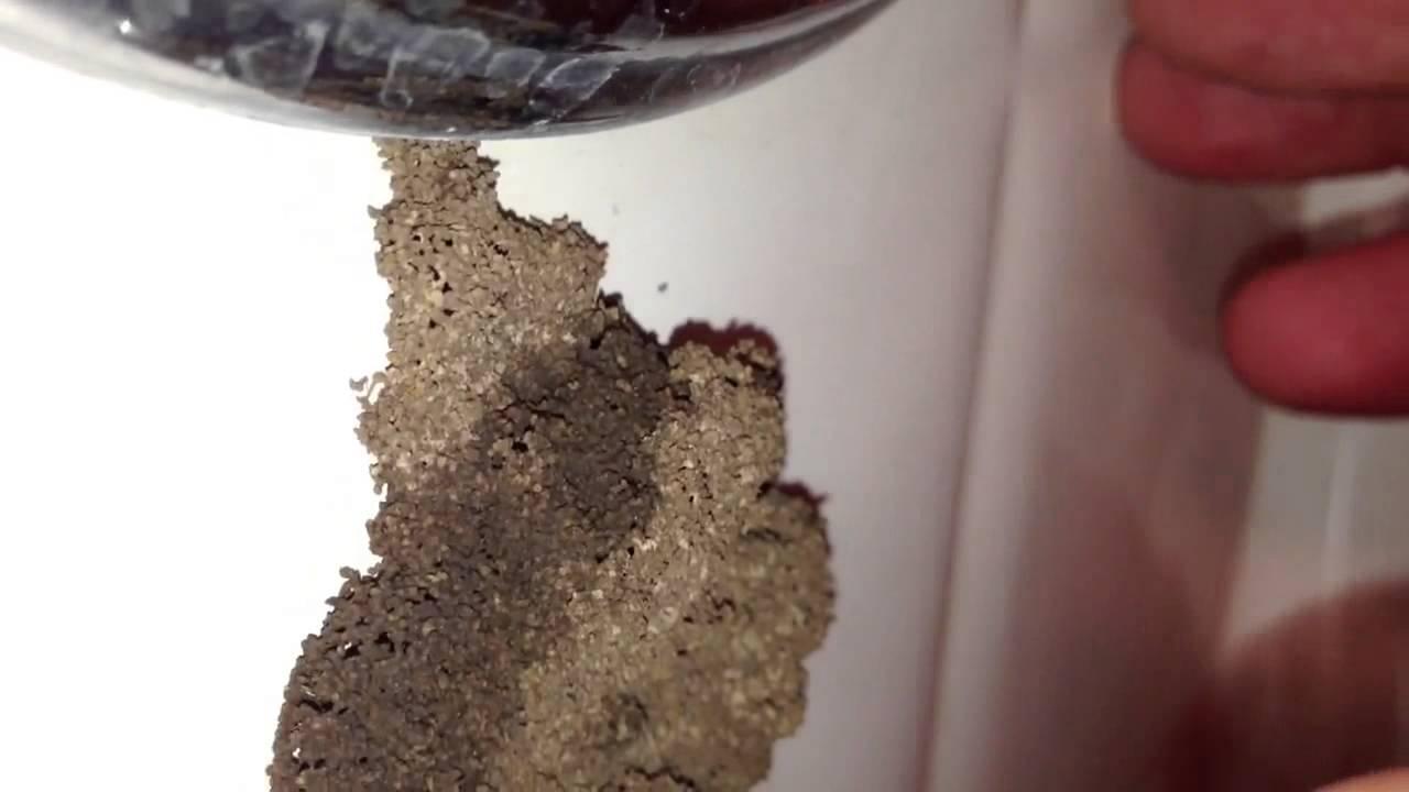 Termites In Bathroom II YouTube