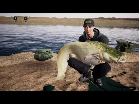 Fishing Sim World-Comment Prendre Des Silure Facilement#2