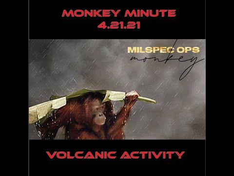 Monkey Minute 4 21 21