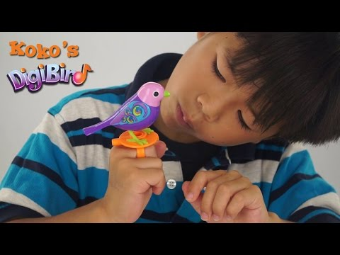 Digi Bird Unboxing and Toy Review by Koko