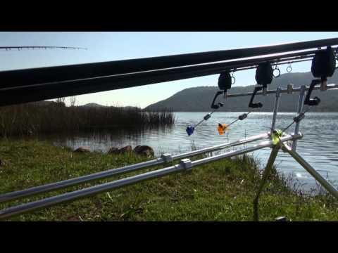 ASFN SPECIMEN CARP Buffelspoort Dam