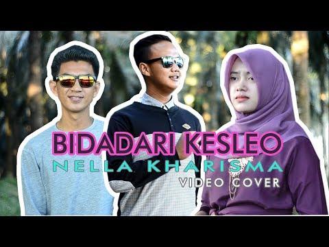 Bidadari Kesleo - Nella Kharisma ( cover versi kebun sawit )