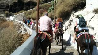Santorini vacations video compilation - Greek Islands(Santorini vacations video compilation - Santorini Greece. Famous Santorini sunset, impressive views of Santorini Island, tourists riding donkeys in narrow streets ..., 2015-07-26T07:19:37.000Z)