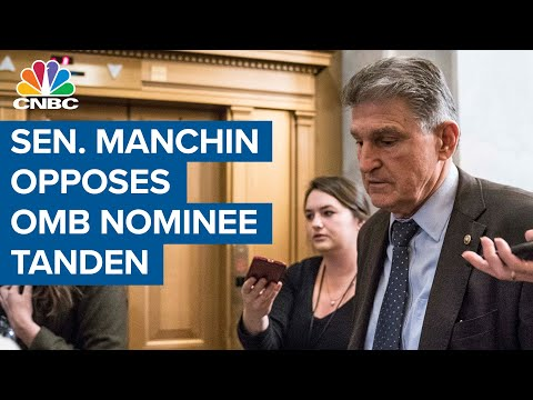 Biden supporters are melting down over Joe Manchin tanking Neera Tanden's nomination over her 'toxic' tweets